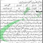 Recruitment Offers in TMA Bahawalpur 2016 For Sanitary Worker Latest
