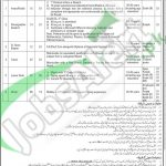 WAPDA Lahore Jobs 2016 NTS Application Form www.nts.org.pk