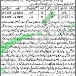 Population Welfare Department Jobs April 2016 For Female Helper Latest