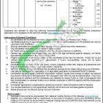 Situations Vacant in WAPDA Dasu Hydropower project April 2016 For Driver NTS Application Form www.nts.org.pk