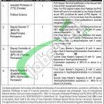 Shaheed Benazir Bhutto University Peshawar Jobs