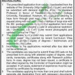 GC University Faisalabad Jobs Application Form