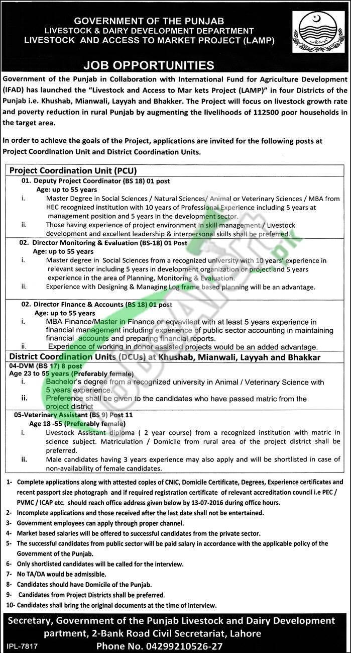 Livestock and Dairy Development Punjab Jobs