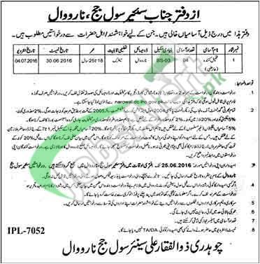 District Court Narowal Jobs