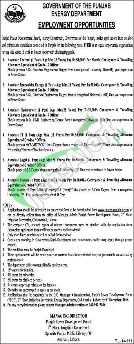 Energy Department Punjab Job