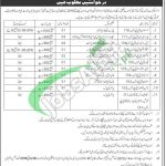 Hajj Directorate Quetta Jobs