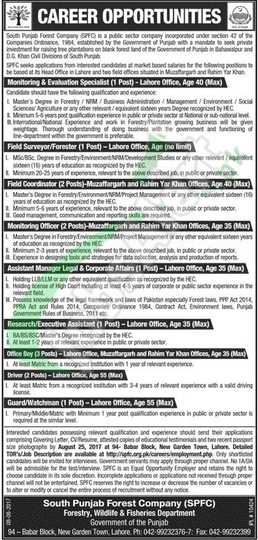 SPFC Jobs