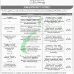 Sindh Bank Jobs