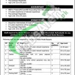 Punjab Model Bazar Jobs