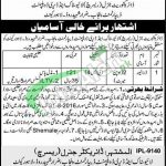 Livestock and Dairy Development Department Punjab Jobs