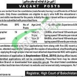 BHC Jobs