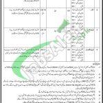 Jail Khana Jat Punjab Jobs