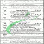 Information Technology University Jobs