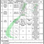 DPS Sahiwal Jobs
