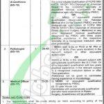Jinnah Burn & Reconstructive Surgery Centre Lahore Jobs