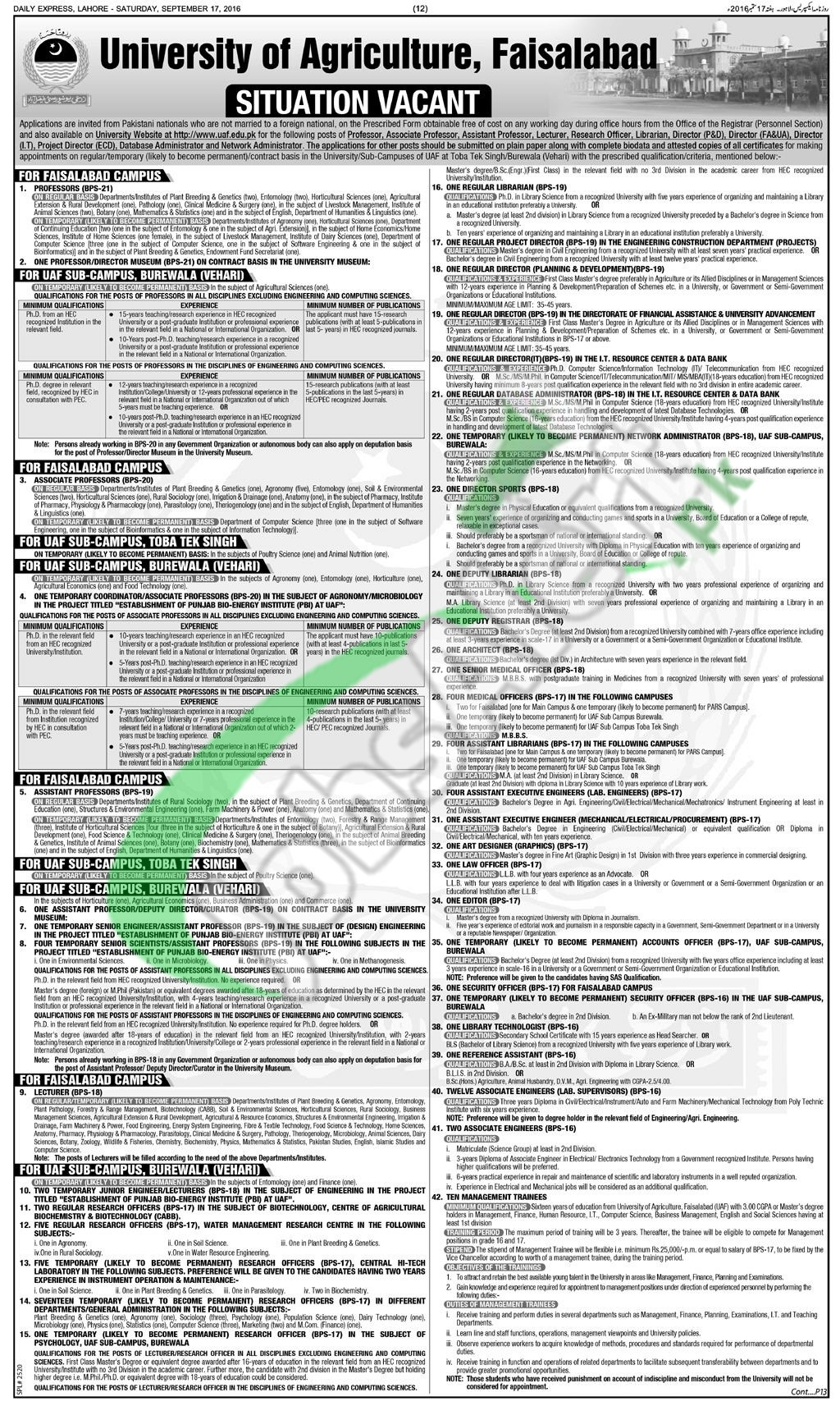 Agriculture University Faisalabad Jobs