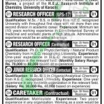 University of Karachi Jobs