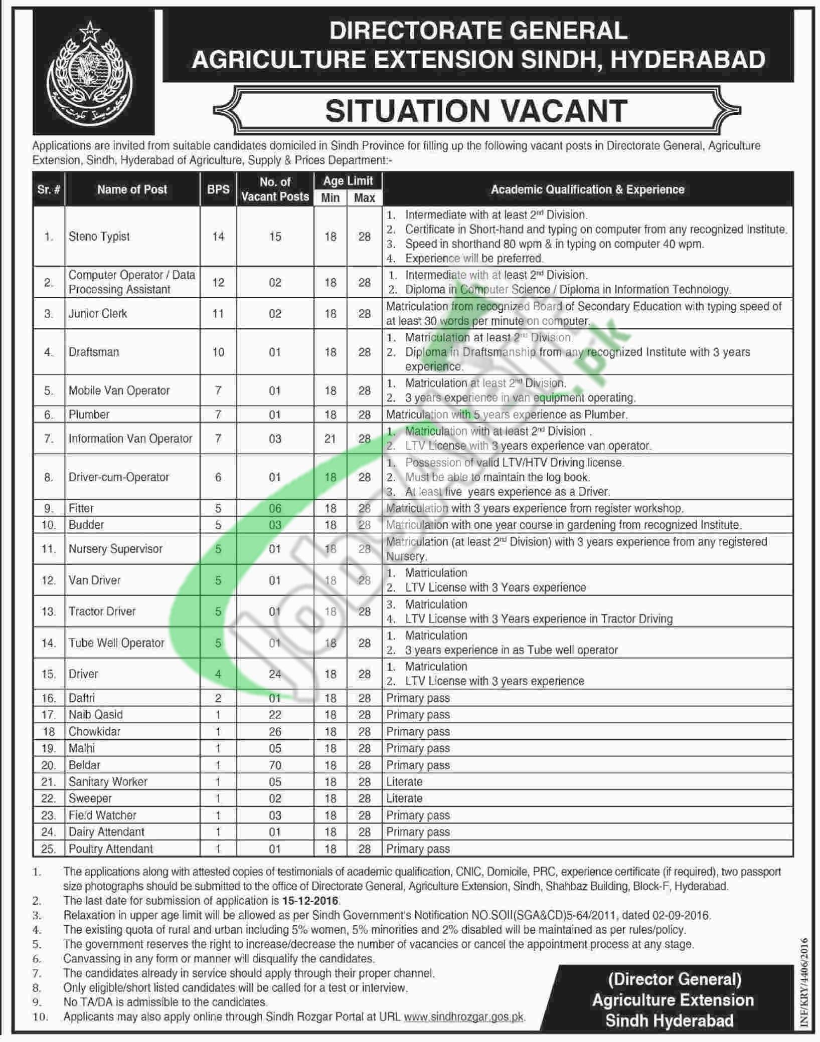 Sindh Rozgar Jobs