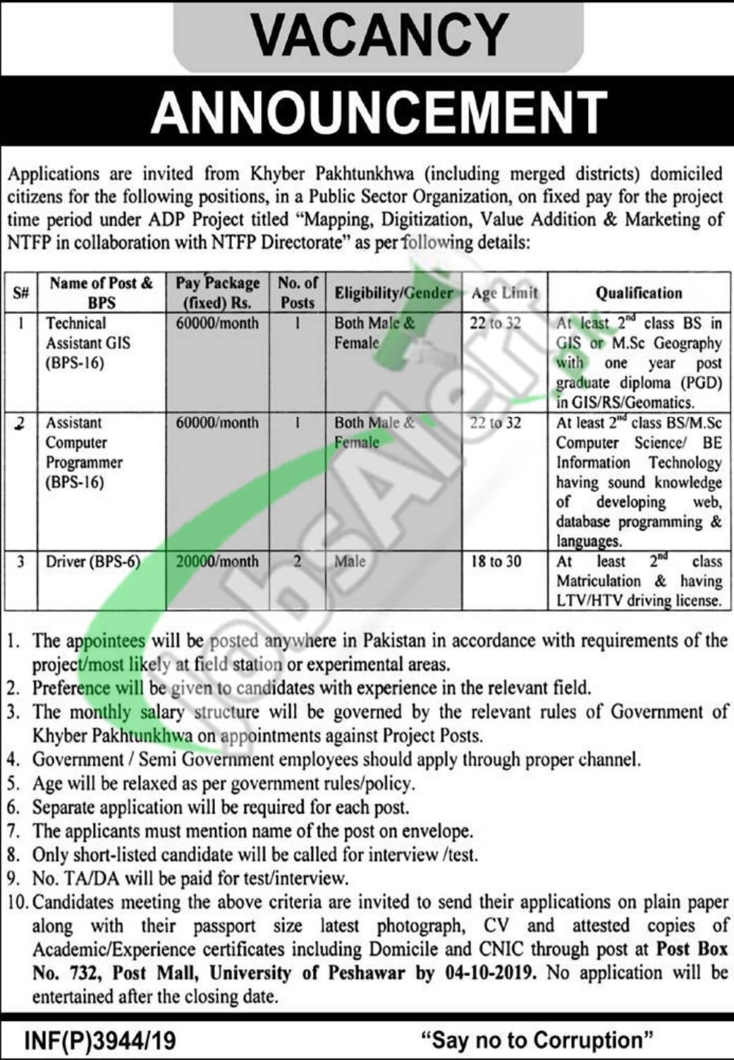 PO Box 732 Peshawar Jobs