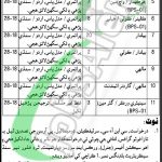 Works and Services Department Sindh Jobs