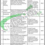 KPIT Board Jobs