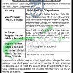 Fazaia Degree College Peshawar
