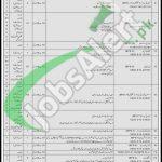 PO Box 750 GPO Rawalpindi Jobs