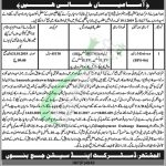 Session Court Bannu Jobs