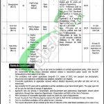 Punjab Housing & Town Planning Agency Jobs