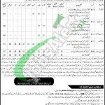Food Directorate Quetta Jobs
