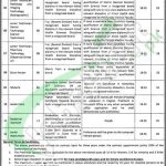 Healthcare Department Punjab Jobs