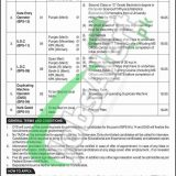 Ministry of Finance Jobs