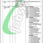 Population Welfare Department Gilgit Baltistan Jobs