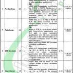 Government Nawaz Sharif Hospital Lahore Jobs