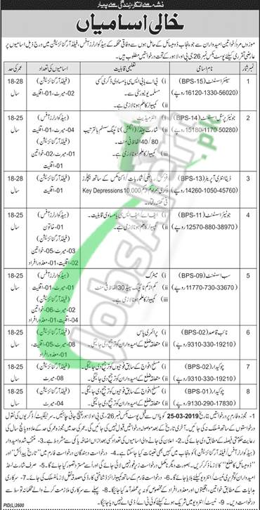Election Commission of Punjab Jobs