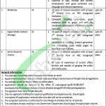 Jobs in Information and Culture Department Punjab