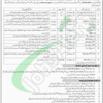 Women University AJK Jobs