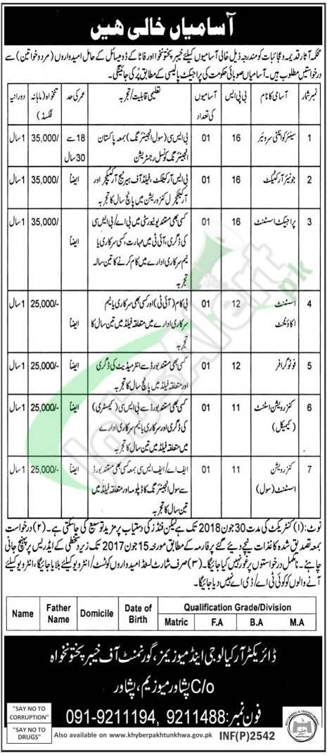 Archaeology & Museums Department Peshawar Jobs