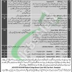 PO Box 903 GPO Rawalpindi Jobs