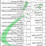 District Health Authority Gujrat Jobs