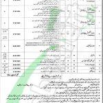 Children Hospital Multan Jobs
