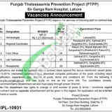 Punjab Thalassemia Prevention Program Jobs 2019