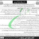 District Health Authority Rahim Yar Khan Jobs 2019