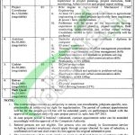 Jobs in Agriculture Department Punjab