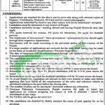 Overseas Pakistani Commission