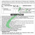 Ameer ud Din Medical College Jobs