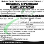 University of Peshawar Jobs