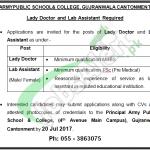 Army Public School Job
