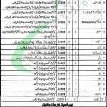 Government Haji Abdul Qayyum Teaching Hospital Sahiwal Jobs