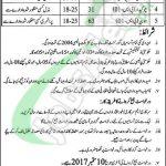 Punjab Food Authority Job